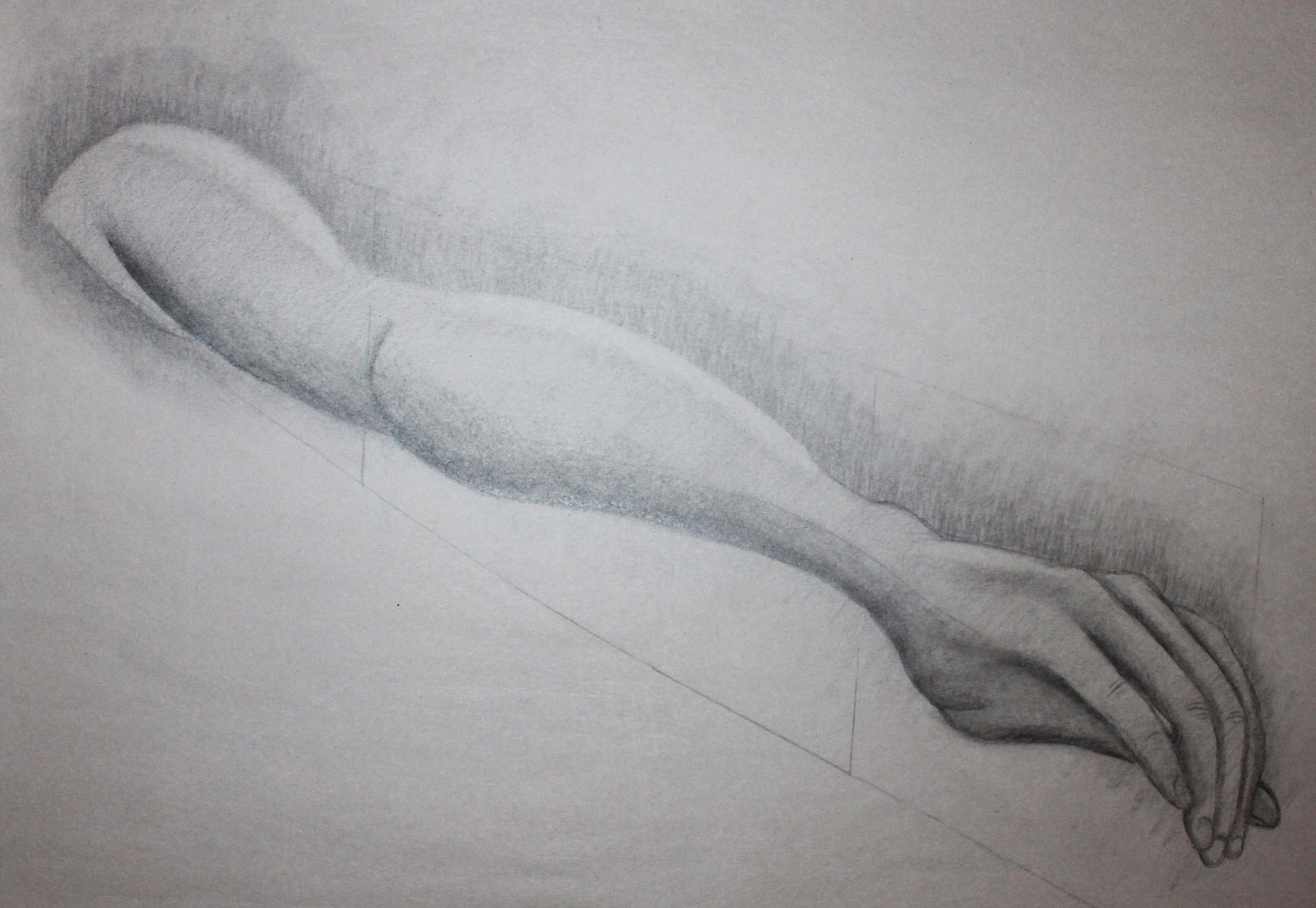 Foreshortened Arm